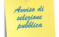 Selezione Pubblica per il reclutamento di n° 4 unità di Assistente all'autonomia e alla comunicazione